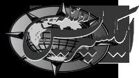 Express Epaper Logo